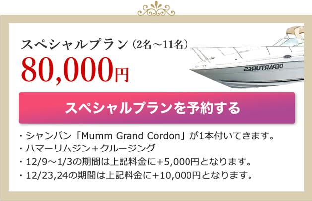 スペシャルプラン(2名〜11名)80,000(税抜)